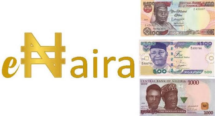 e-Naira review